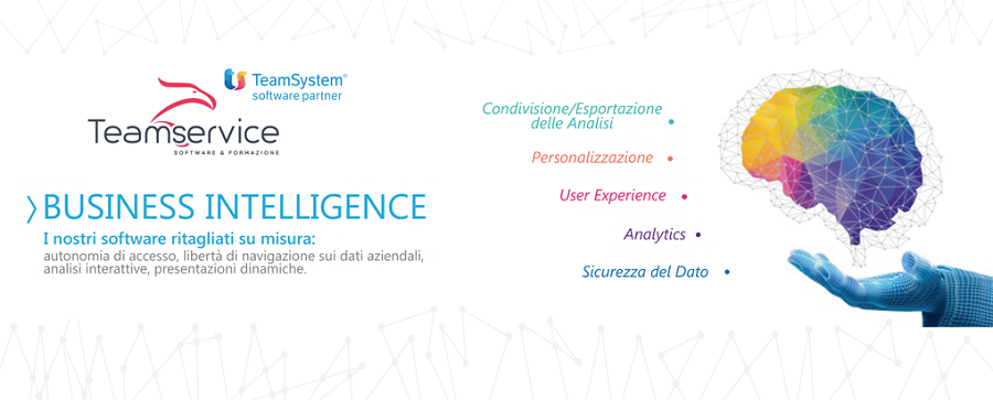 BusinessIntelligence_teamsystem_teamservicesrl_bis